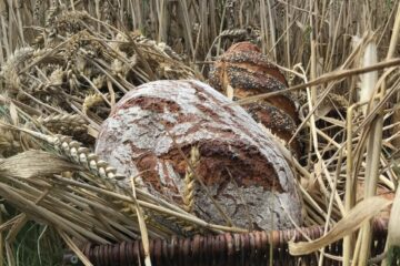 Unser täTitelbild WWB 2021-10 Unser tägliches Brot gib uns heute - Gerti Arnold
